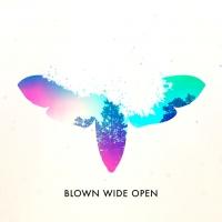 Adrián Espejo - Diseñador - Blown Wide Open