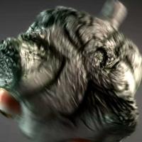 Adrián Espejo - Diseñador - The Flying Cat
